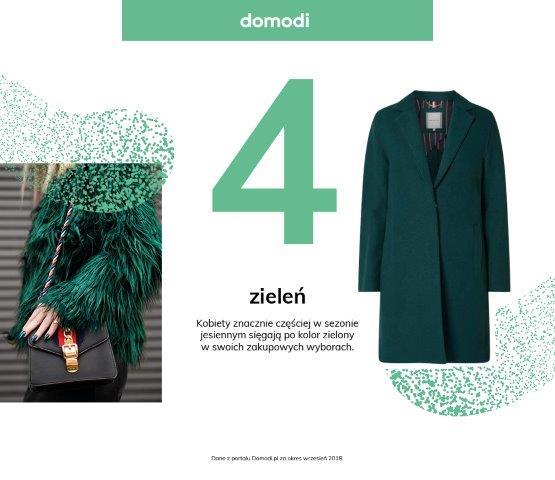 Domodi_raport (4)