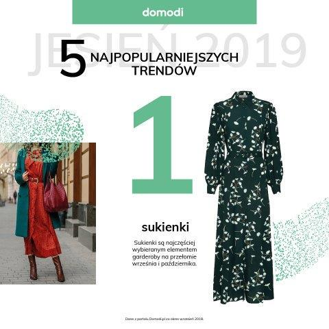 Domodi_raport (1)